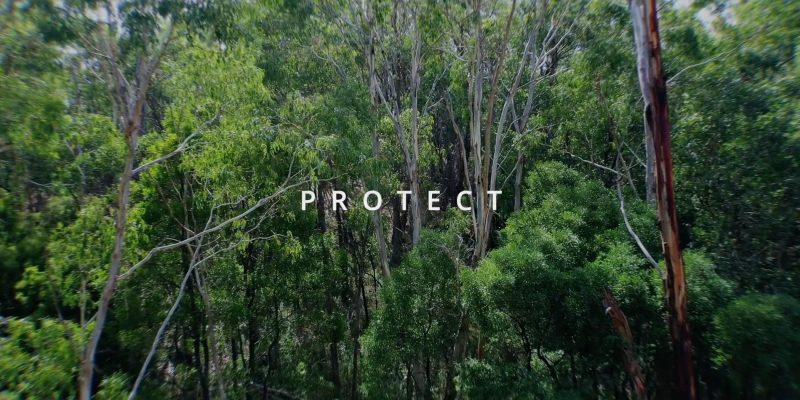 AHWR Protect Video